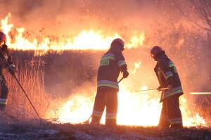 Wieczorny pożar traw w Wawrze