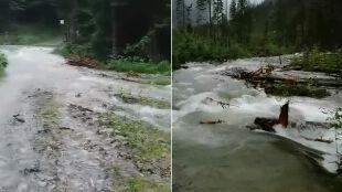 Wiele zamkniętych szlaków w Tatrach. Niebezpiecznie także w Bieszczadach