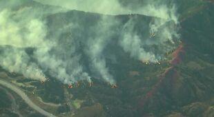 Pożar w okolicach Los Angeles